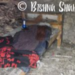 Bishna Shahi-Rachuli-bed-in-cowshed
